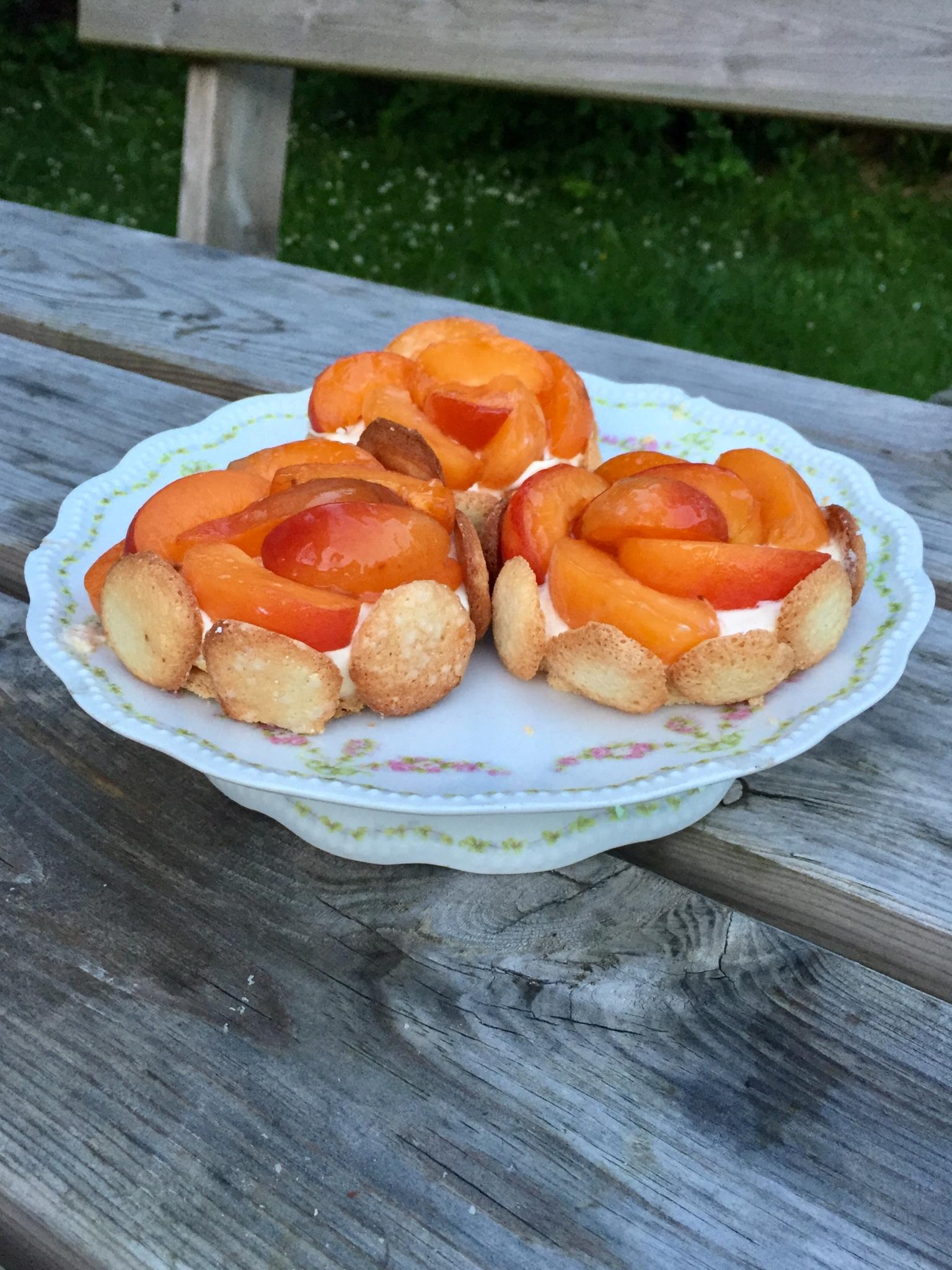 Tarte abricot amande de Jérôme de Oliveira adaptée sans gluten